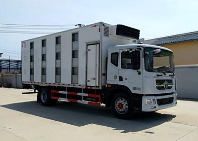 东风D9单排6.8米雏鸡运输车